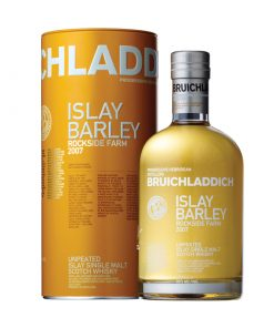 Bruichladdich Islay Barley Single Malt Scotch Whisky 247x296 - Bruichladdich Islay Barley Single Malt Scotch Whisky