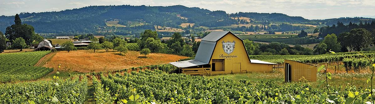 Bergstrom 1 - Bergstrom Bergstrom Vineyard Pinot Noir 2016