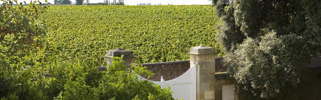 Chateau Les Ormes de Pez - Chateau Les Ormes de Pez Saint Estephe 2015