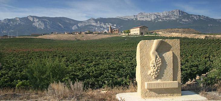 Vinedos de Paganos - Vinedos de Paganos Rioja Gran Reserva El Puntido 2006